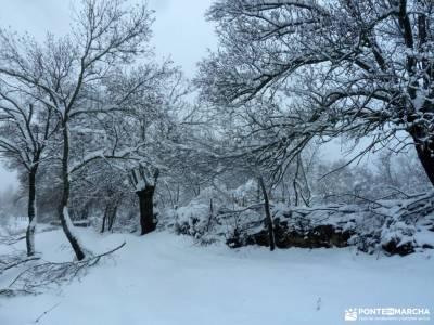nieve, invierno, cañada; rutas senderismo comunidad de madrid parque nacional de covadonga senderis
